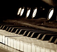 Harmonium by SunDwn
