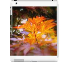 Front yard tree-1  ^ iPad Case/Skin