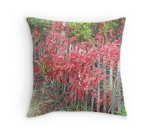 Virginia Creeper on Dune Fence - Fall Colors Throw Pillow
