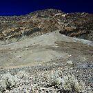 Death Valley Runoff by Dawn Parker