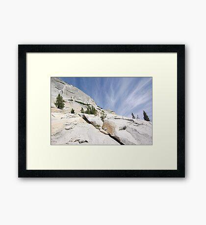 Olmsted Uprise Framed Print