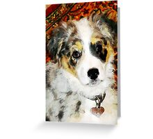 "Australian Shepherd ""Missy"" Greeting Card"