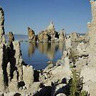 Mono Lake Reflections by Dawn Parker