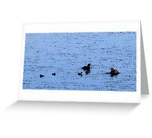 Little Grebe Family / Dobbertjie familie Greeting Card