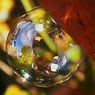 Garden in a bubble by ElsT