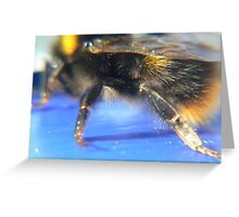 bumble Bee:) Greeting Card