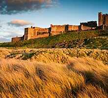 Bamburgh Castle, Northumberland. UK by David Lewins