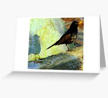 Blackbird singing at the break of dawn Greeting Card
