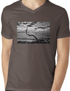 Serenity At Last Mens V-Neck T-Shirt