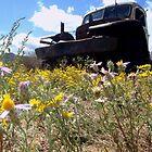 Abandoned Truck by BoddyHiker