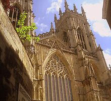 York Minster from Precentor's Court by Chris Millar