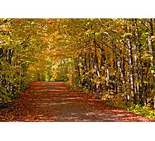 Fall Road Photographic Print