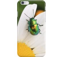 Green beetle iPhone Case/Skin