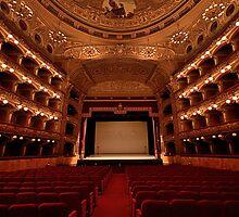 Interno del Teatro Massimo Bellini - Catania by Andrea Rapisarda