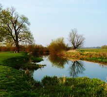 Grantchester Meadows 1 by artfulvistas