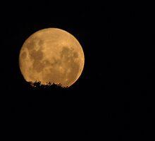 Super Moon by shortshooter-Al