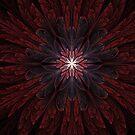 Red Velvet Blossom by Jaclyn Hughes