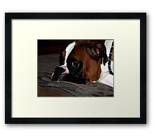 I Didn't Mean to be Bad Framed Print