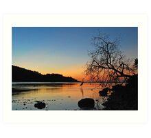 Heron Sunset Art Print