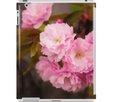 Cherry Blossoms in Bloom in New York City iPad Case/Skin