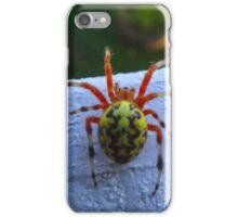 Marbled Orb Weaver iPhone Case/Skin