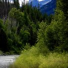 Glacier Country (Montana, USA) by rocamiadesign