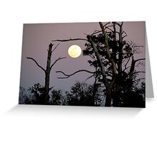 By the Light of the Moon Greeting Card