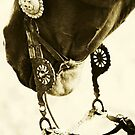 Vaquero Style II by Emily Peak
