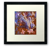 """Delightful Amusements"" Framed Print"