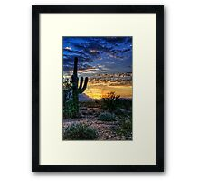 Sonoran Sunrise  Framed Print
