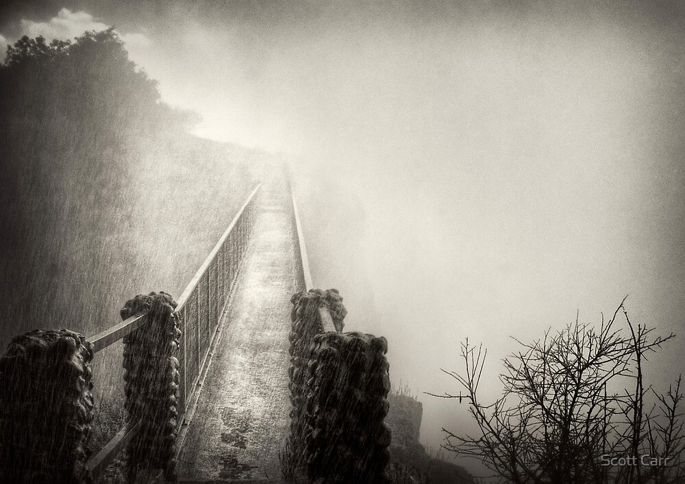 Into the Mist by Scott Carr