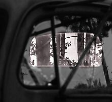 Rear Window View by Robert Kelch, M.D.