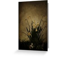 Vintage Collection Greeting Card