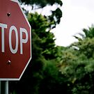 Stop!! by tiger5