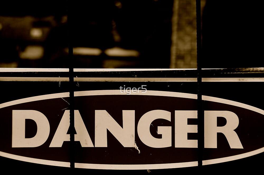 Black Danger! by tiger5