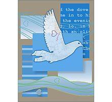 Dove Love Photographic Print