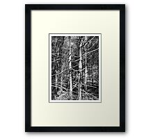 Limbs Outstretched Framed Print