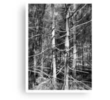 Limbs Outstretched Canvas Print
