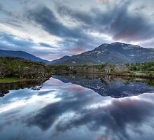 Tidal River Reflections by Daniel Robertson