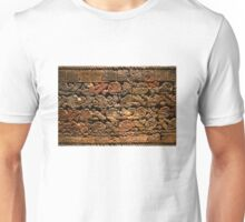 Mayan pictograph at the Anthropological Museum in Mexico City  Unisex T-Shirt