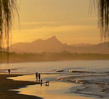 Belongil Beach with Mt Warning by surferpete