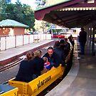 Diamond Valley Station Eltham, Victoria ... by elwyn crawford