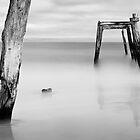 Outcast by Luis Ferreiro