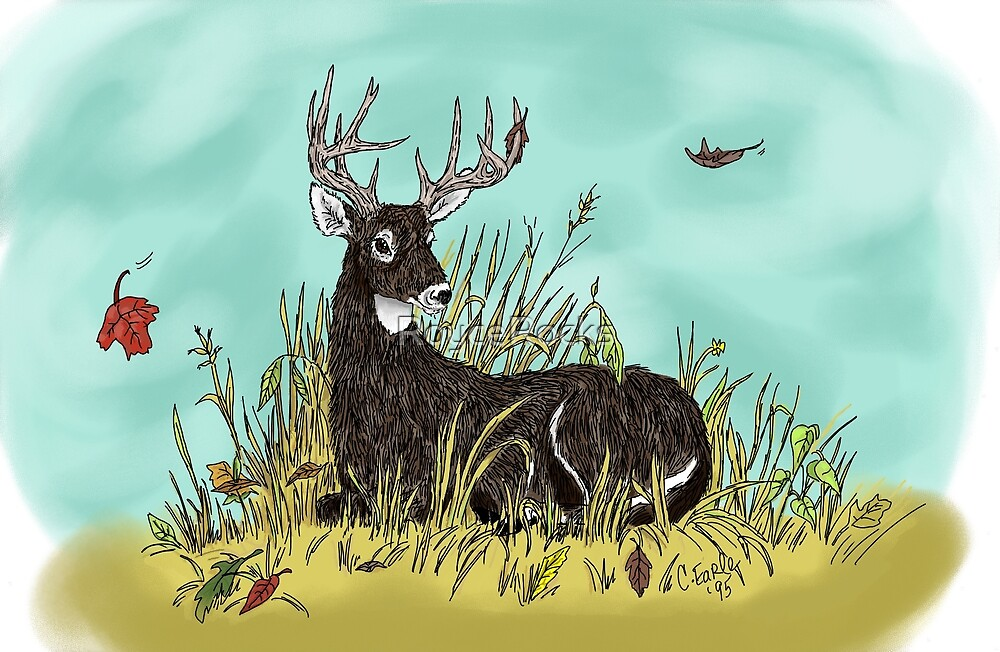 Whitetail Buck In Repose...Colored by RoyceRocks