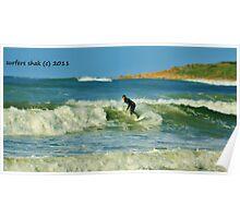 dof surfing Poster