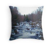 Spring Run Off, St. Regis River Throw Pillow