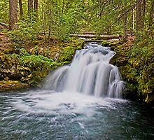 Whitehorse Falls by LucyAbrao