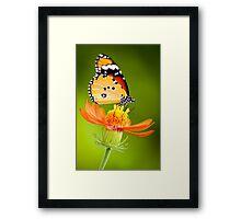 Butterfly 8 Framed Print