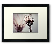 After the fire... Framed Print