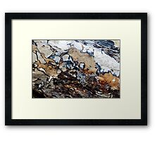 Bark Cartography Framed Print